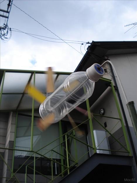 Photos: 風を切って