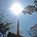 25 天に昇る塔