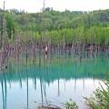 40 青い池