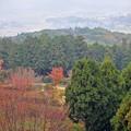 07 高台からの風景