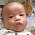 Photos: TOYにーちゃん生後2ヶ月の頃
