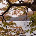 写真: 十和田湖畔02