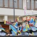 かえる2017 風鈴鹿山-09