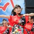Photos: おどるんや2017 西浜08