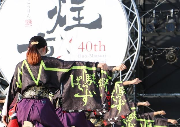 Photos: おの恋2017 下駄っぱーず21