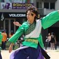 Photos: ど祭2017 飃14