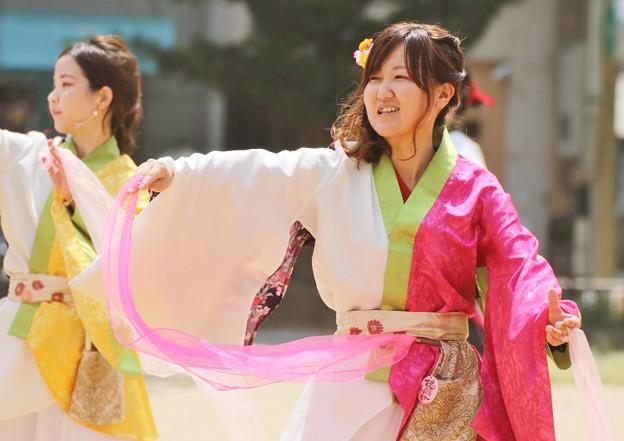 ど祭2017 桜06