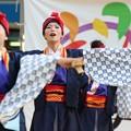 Photos: ど祭2017 四万夢多05
