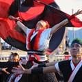Photos: 神戸2017 おどりっつ01