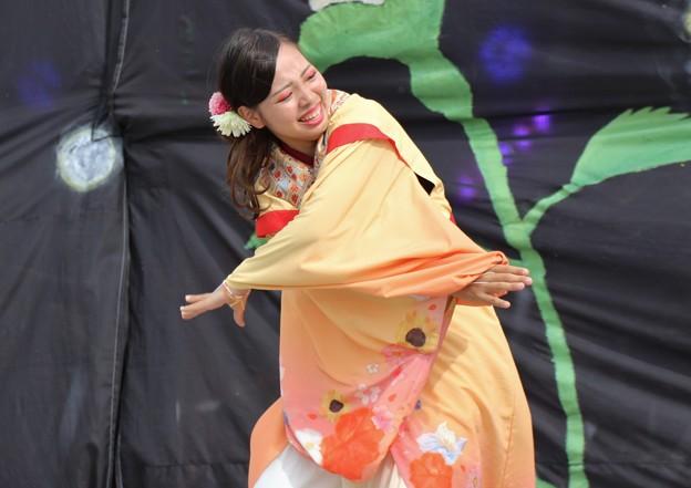 こいや2017 仏喜踊15
