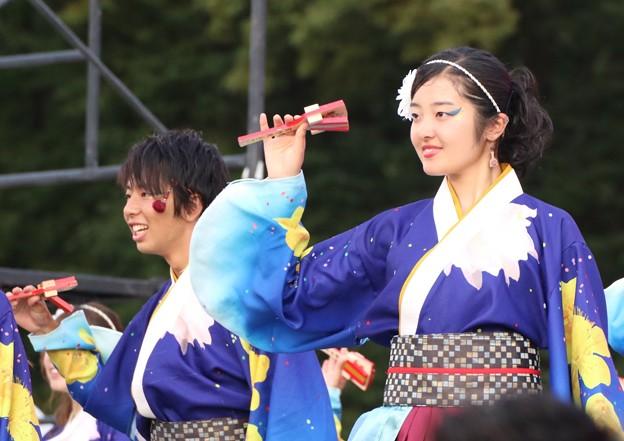 Photos: こいや2017 フィナーレ よさ朗 09