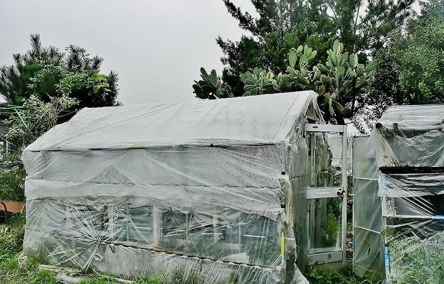 アルミ1.5坪温室