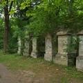Photos: サンクト・マルクス墓地