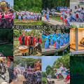 event collage