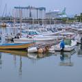 写真: 小さな漁港から