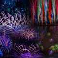 写真: やつしろ全国花火競技大会collage