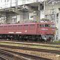 EF81-406貨物