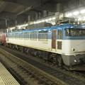 EF81-503貨物 2