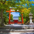 写真: 嵯峨嵐山臨濟宗大本山天龍寺