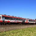 133D 鹿島臨海鉄道6000形6006+6011+6018