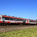 Photos: 133D 鹿島臨海鉄道6000形6006+6011+6018