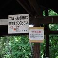 Photos: クマ注意
