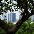 日吉公園 (横浜市港北区日吉)