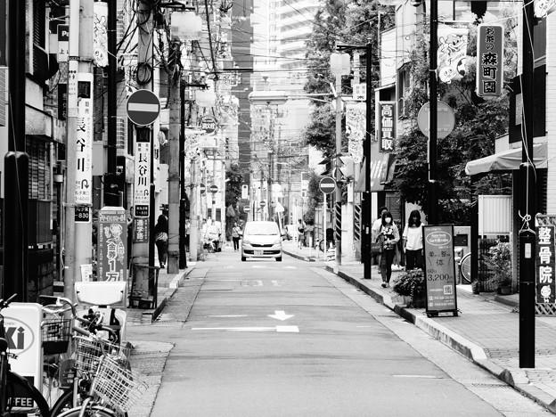 新丸子駅界隈 (川崎市中原区新丸子東)