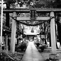 丸子山王日枝神社 (川崎市中原区上丸子山王町)