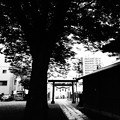 茅原浅間神社 (練馬区小竹町)