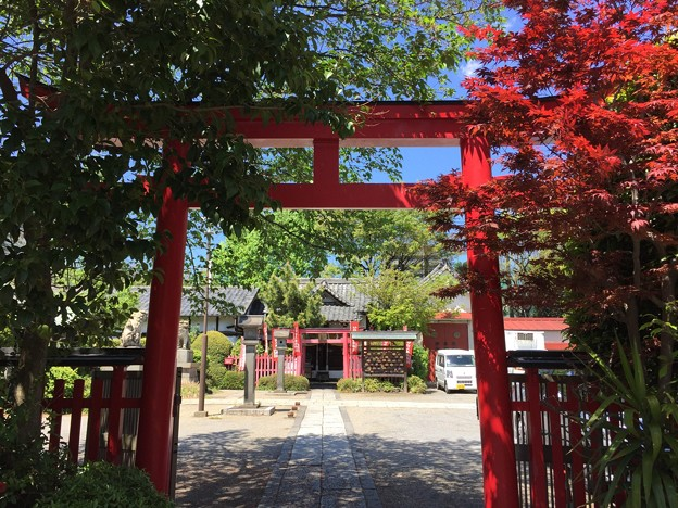 4月_玉姫稲荷神社 4