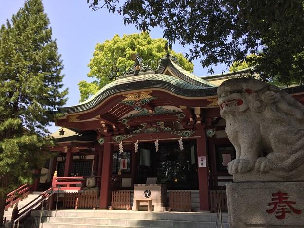 4月_葛西神社 3