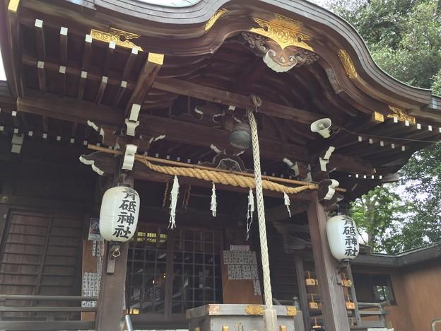 9月_青砥神社 1