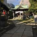 Photos: 11月_千束稲荷神社 1