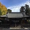 Photos: 11月_香取神社 2