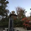 Photos: 12月_意富比神社 2