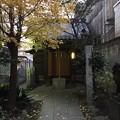 Photos: 12月_厳島神社 1