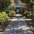 Photos: 12月_常立寺 3