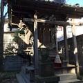Photos: 1月_平井諏訪神社 3