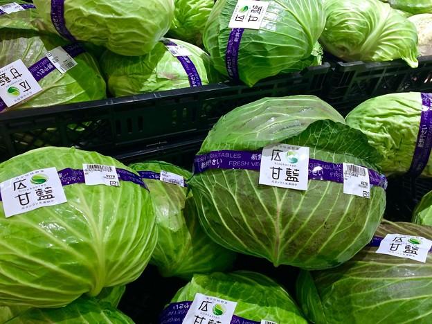 広甘藍 cabbage 呉市郷原野路の里2丁目 広カンラン生産組合