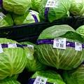 写真: 広甘藍 cabbage 呉市郷原野路の里2丁目 広カンラン生産組合