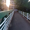 Photos: 本川橋 広島市中区堺町 - 中島町 2016年8月7日