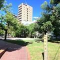Photos: 幟町公園 広島市中区幟町 2017年8月31日