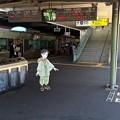 広島駅 在来線ホーム 広島市南区松原町 スマホアプリ 舞台めぐり AR撮影 2016年8月12日