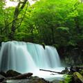 奥入瀬渓流2 銚子大滝