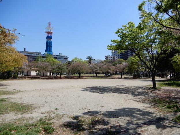 ザビエル公園 (1)