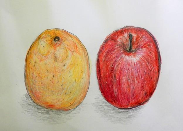 蜜柑と林檎