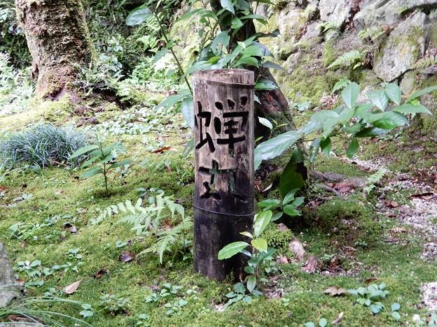 関蝉丸神社上社 (4)