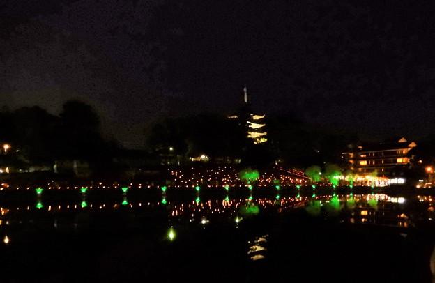 奈良燈花会 (2)・猿沢池