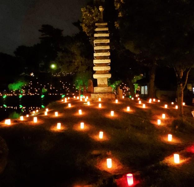 奈良燈花会 (4)・猿沢池